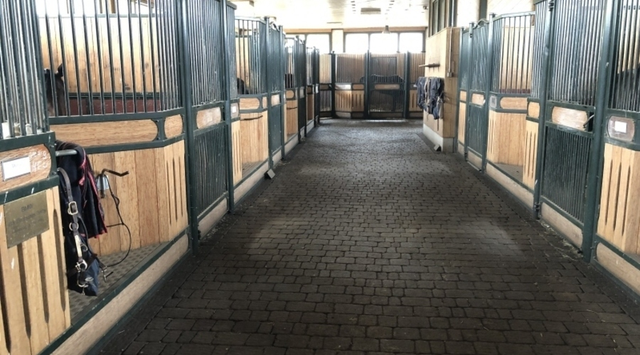 Equestrian Facility for Sale