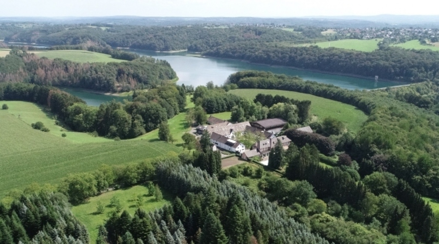 Exclusive estate with extensive land and forest ownership