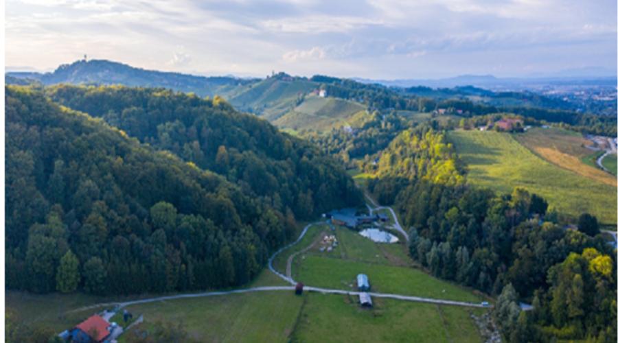 Development Opportunity in Pesnica