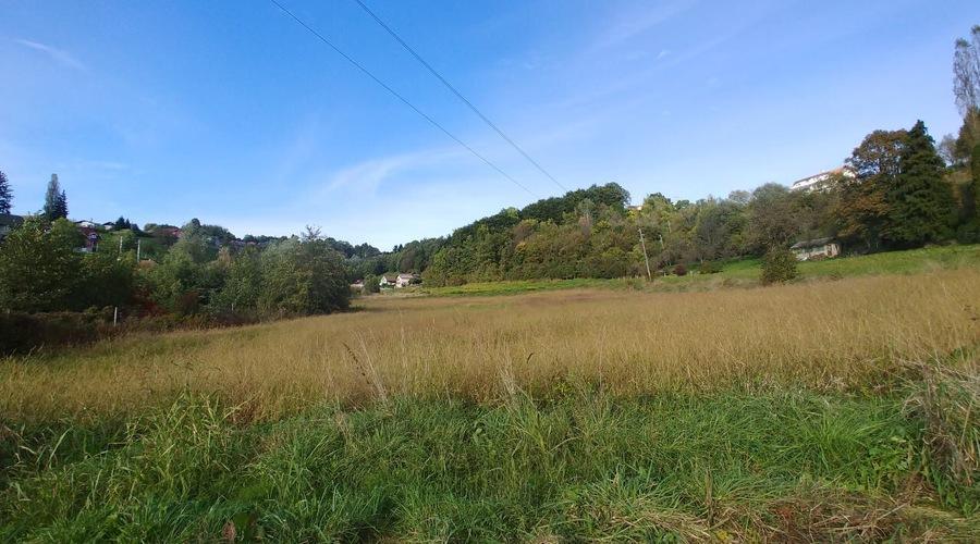Land Investment