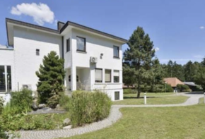 Equestrian Centre with Owner's Villa on site