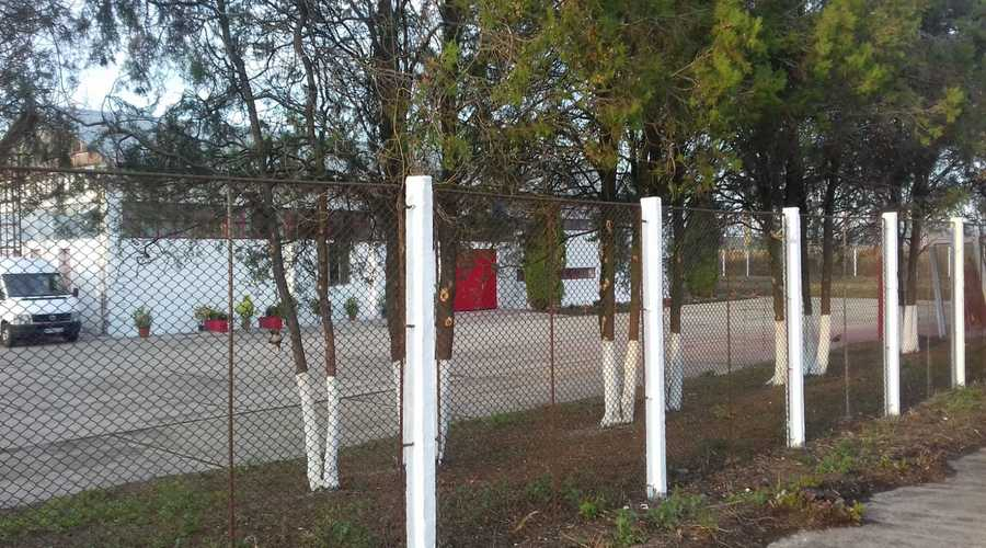 Multi-purpose industrial property for sale -  Mures County