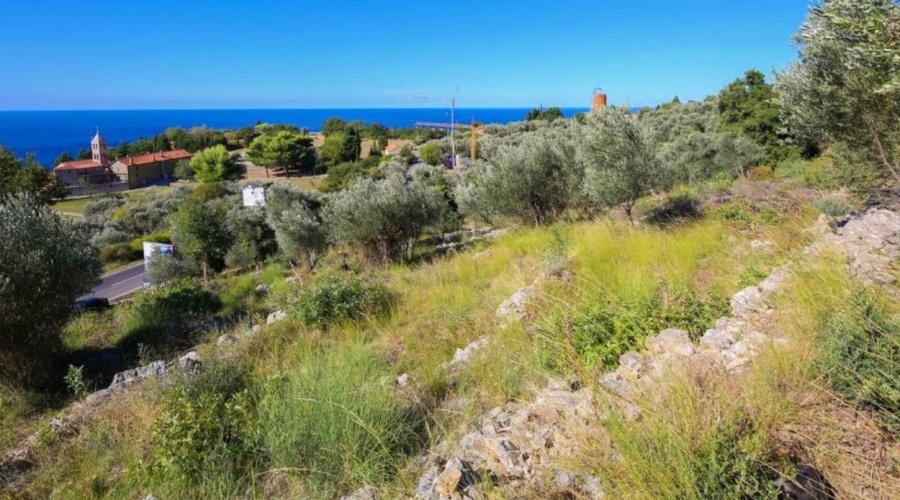 Development plot in Rezevici, Budva Riviera, Montenegro